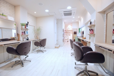Hair Lounge Ayung 【ヘアラウンジ アユン】(銀座・東京丸の内/美容室)の写真