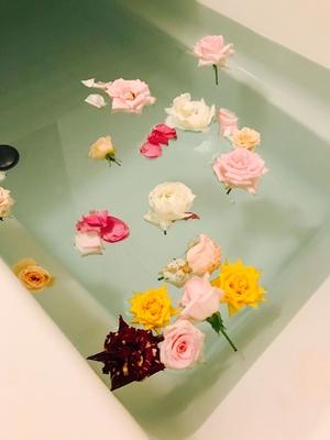 バラを頂いたのでバラ風呂にしました  癒される(๑′ᴗ‵๑)