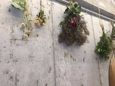 はじめまして!アルベッキヘアーです。 5月26日に玉造にオープンしました。 開店祝いに頂いたお花で、たくさんのドライフラワーが出来ました。 とても素敵なインテリアになっています!