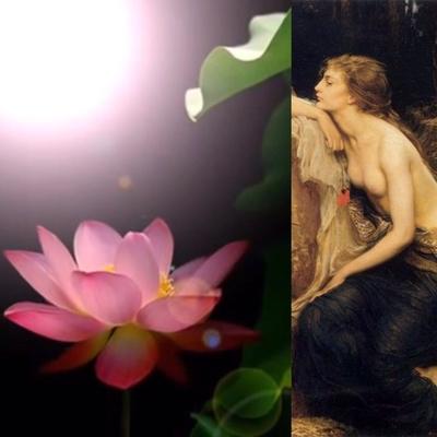 《8LAMIA8 名前の意味》 ギリシャ神話の中で、 あまりの美しさに妬まれ、 両性具と言われる事もあった、 蛇の王妃の名前 ラミア(蛇女)です。  《8LAMIA8 ロゴの意味》 ロゴになっているハスの花は、 泥水の中ですら、 綺麗に咲き誇れる程力強いハスの花。 私達の人生で例えると、 泥水は苦境や困難。 泥水の中から立ち上がって、 気高く清らかな花を咲かすという意味です。  ※ ラミアやハスの花の様に、 泥水の中でも、 妬まれるくらい、 美しくなるという、 究極の美意識を目指しています。