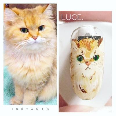 #nail#nailart#ジェル#ジェルネイル #練習#ペット#ペットネイル #リアル#猫#cat#猫ネイル #動物#可愛い#ネイルチップ #ペルシャ猫#nailstagram#奈良 #自宅サロン#お家ネイル#Luce.