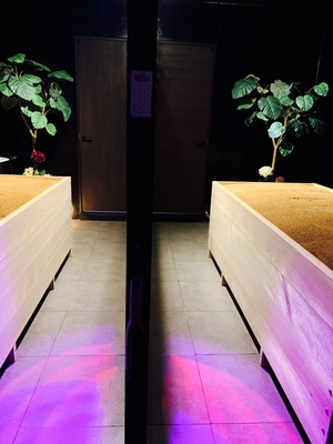 壁を挟んで左右にゆったりと浴槽があります♪ 男性でも女性でもお隣を気にする事なく安心してリラックスできますよ〜✨お友達同士やカップルさんは会話しながらご入浴も可能ですのですのでちょっと安心ですね💕 #酵素浴#酵素spa#酵素風呂#埼玉酵素浴#埼玉酵素spa#おしゃれ酵素spa#ダイエット#デトックス#毒素排出#温活#疲労回復#さいたま市#埼玉#埼玉北区#日進